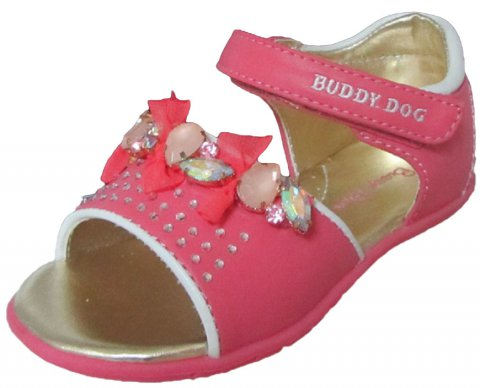 BUDDY DOG 5652 (1)